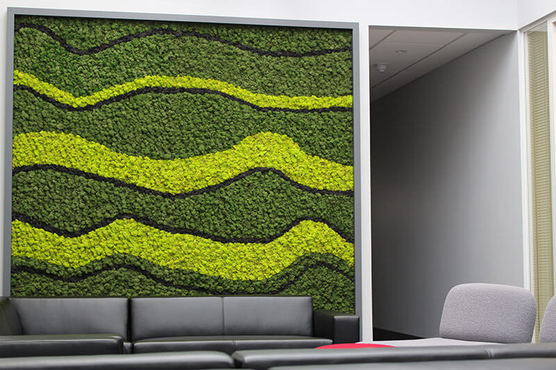Moss Walls from Leaflike - Gallery Image 6