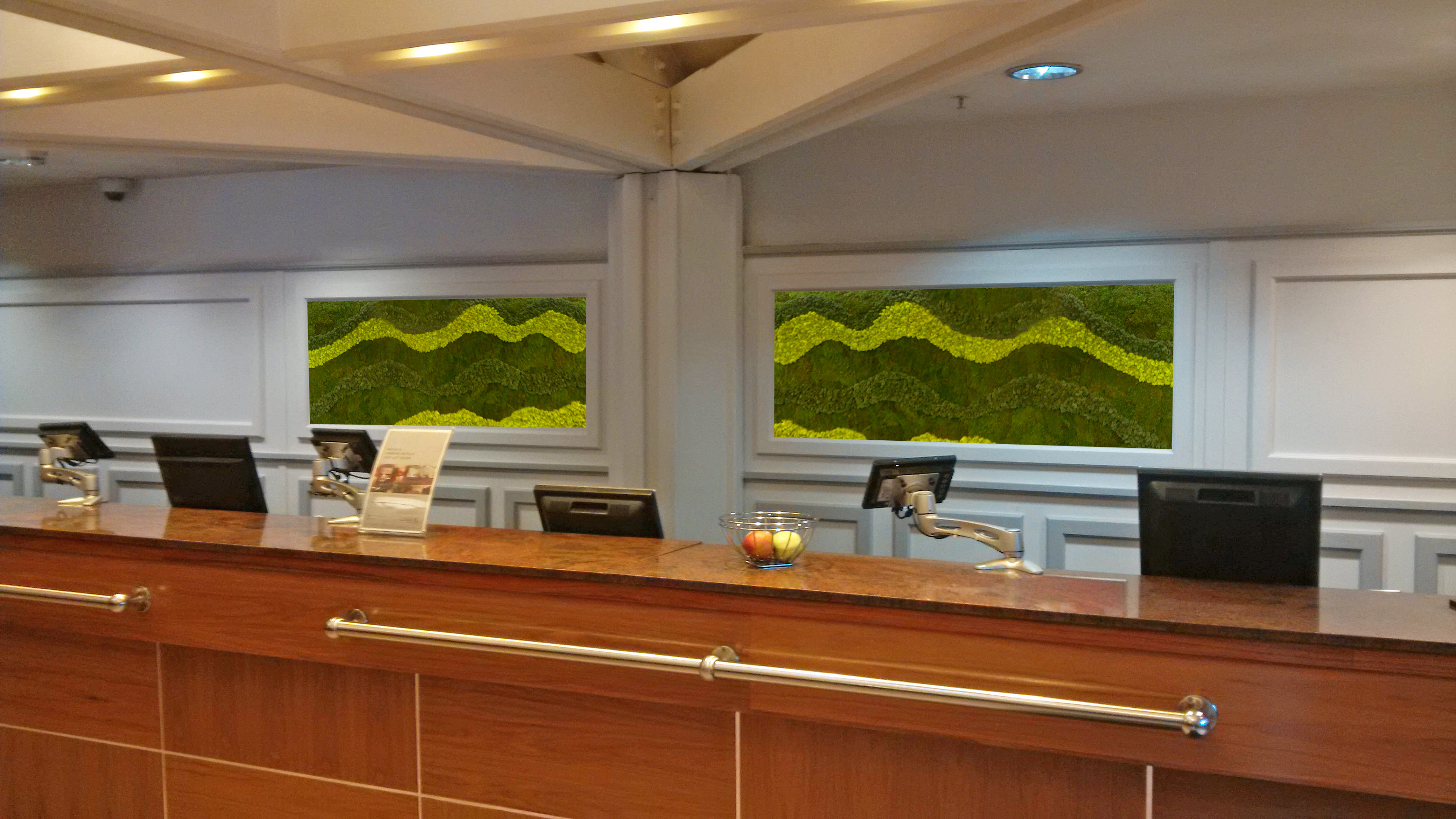 Moss Walls from Leaflike - Gallery Image 11