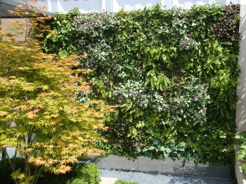 Living Walls from Leaflike - Gallery Image 2