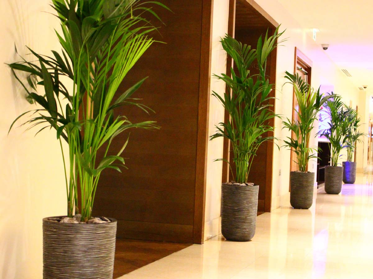 Hilton Hotels Case Study 5